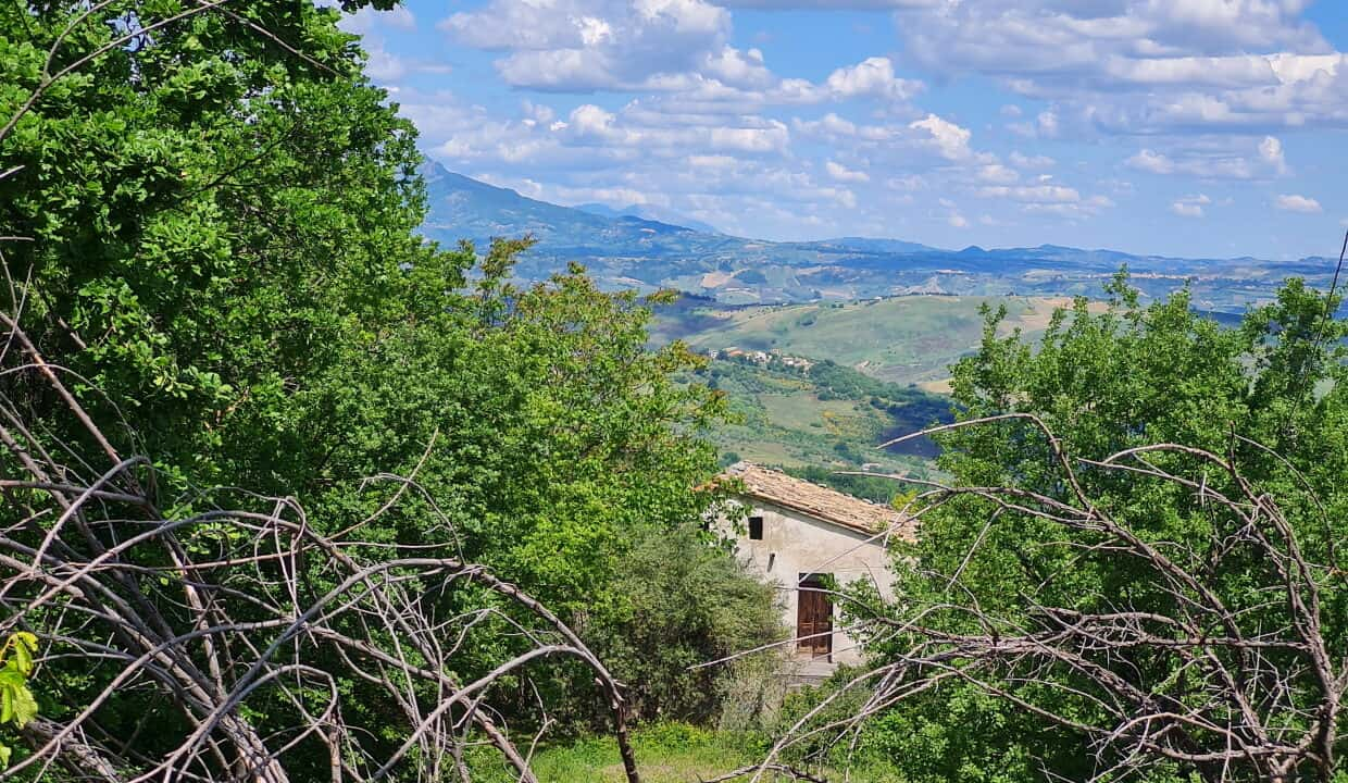 A home in Italy3669